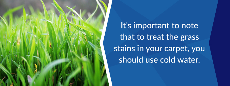 To treat grass stains in your carpet you should use cold water.