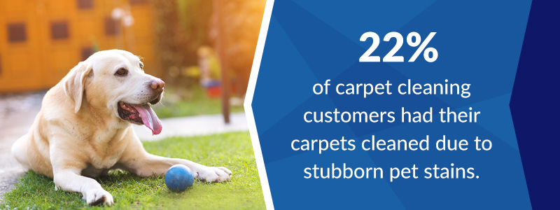 Yellow lab dog sitting on grass with a small blue ball. 22% of carpet cleaning customers had their carpets cleaned due to pet stains.