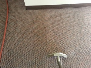 carpet-cleaning-photo-2