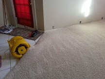 carpet-cleaning-photo-3